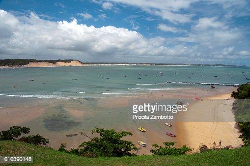 Baía Formosa, Rio Grande do Norte, Brazil : Stock Photo