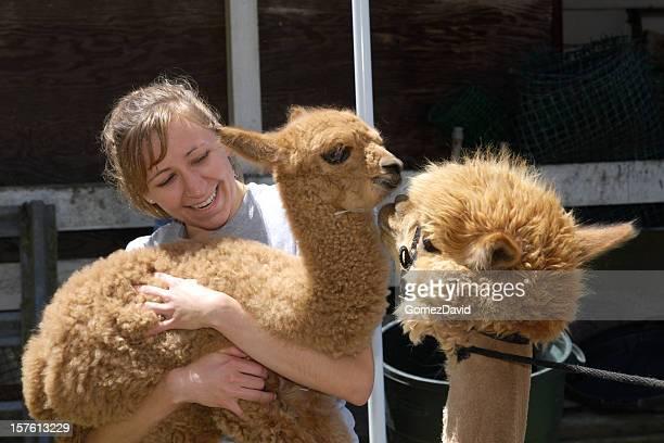 Baby Alpaca Being Held by Woman