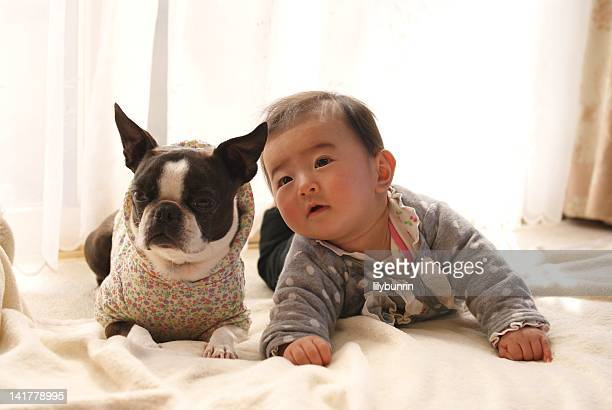 Baby and Boston terrier dog lying on bed