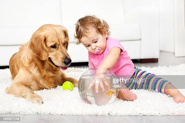 Bambino e cane catturare un pesce rosso