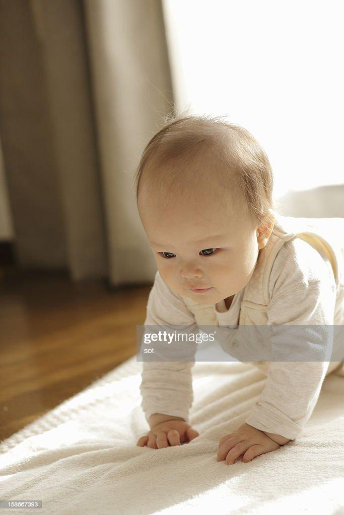 Baby boy crawling,close up : Stock Photo