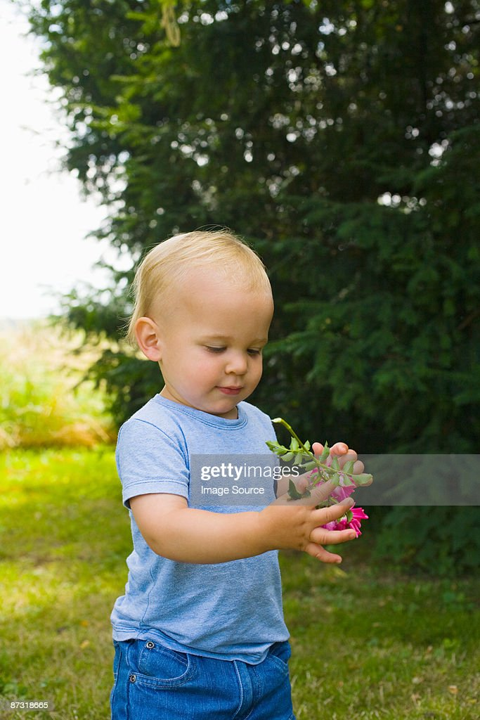 A baby boy holding flowers : Stock Photo