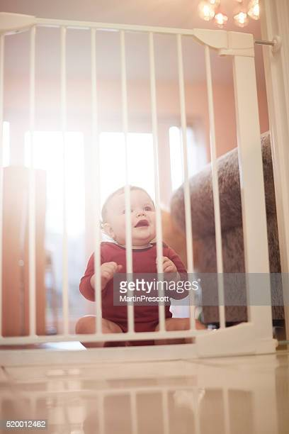 Baby boy waits behind baby gate