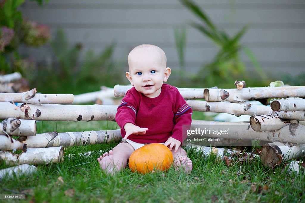 Baby boy with pumpkin : Stock Photo