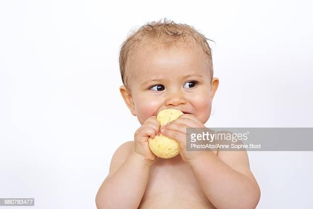 Baby chewing on sponge