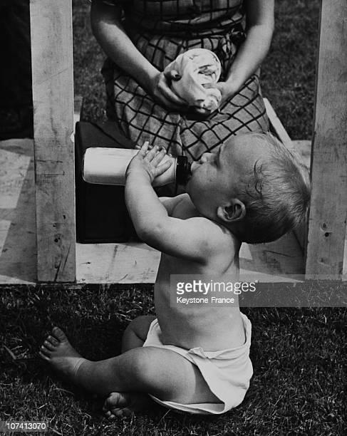 Baby Drinking Milk From A Feeding Bottle