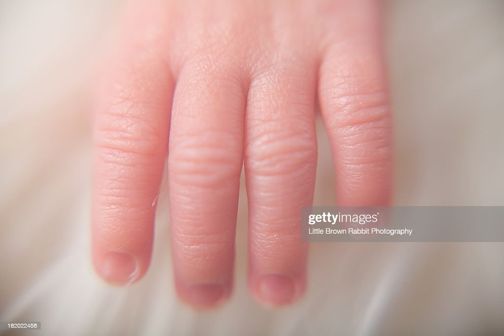 Baby Fingers : Stock Photo