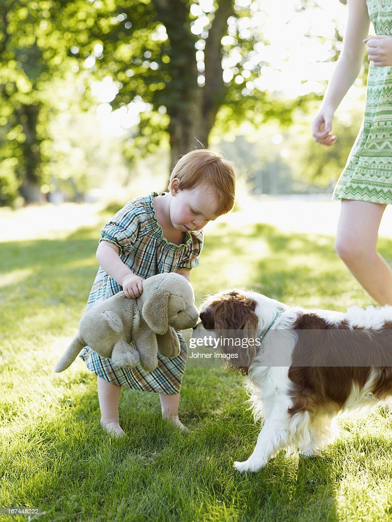 Baby girl and older sister playing with dog in park : Stock Photo