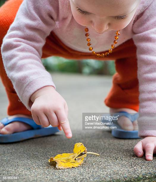 Baby girl looking at an insect on a leaf