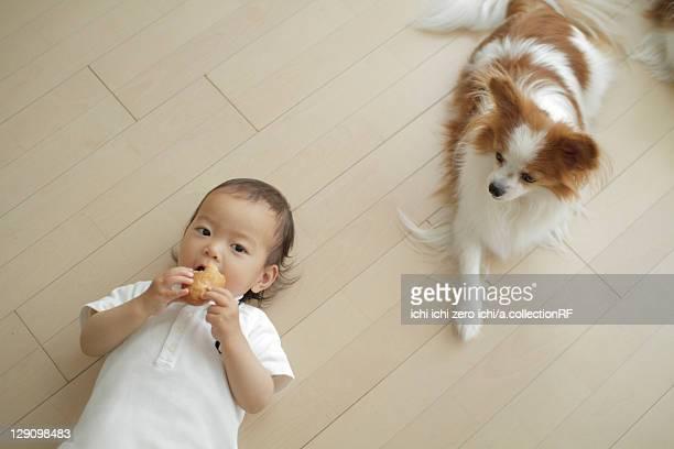 Baby girl lying down next to dog