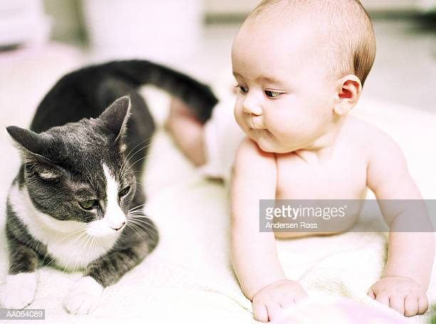 Baby girl (3-6 months) lying on stomach beside cat (selective focus)