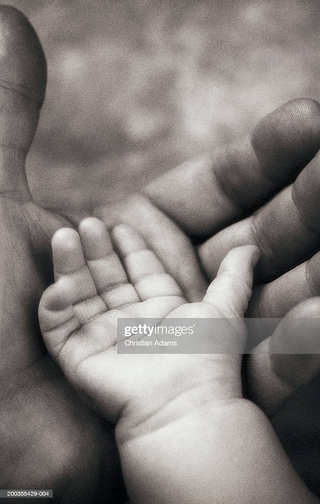 Baby girl (3-6 months) placing hand on father's hand, close-up (B&W) : Stock Photo