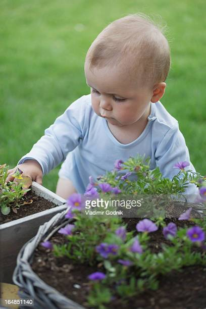 Baby in garden looking at pot of flowers
