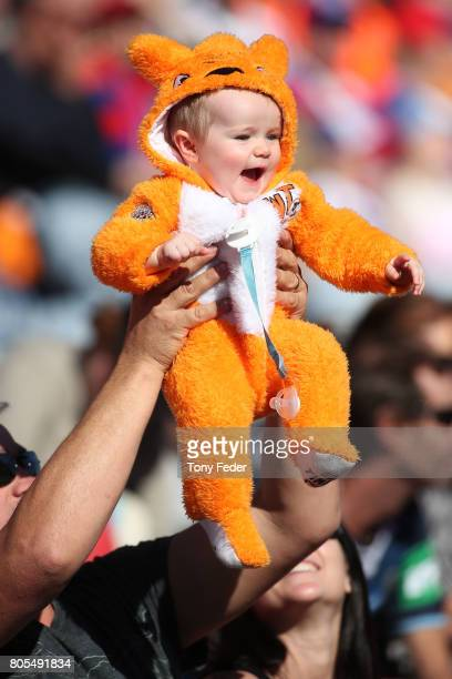 A baby is dressed in Tigers colors during the round 17 NRL match between the Newcastle Knights and the Wests TIgers at McDonald Jones Stadium on July...