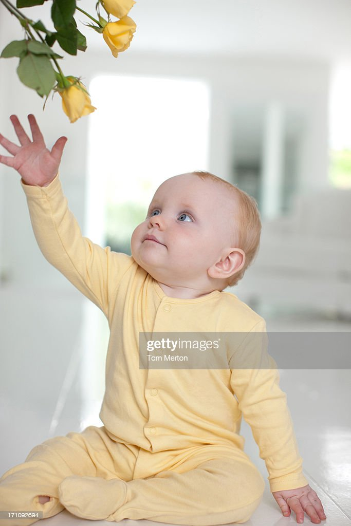 Baby reaching  for yellow flower : Stock Photo