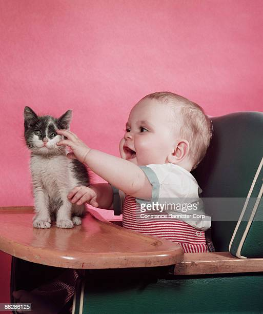 Baby sitting in high chair petting kitten