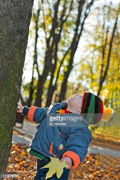 Baby berühren einen Baum und Blick nach oben