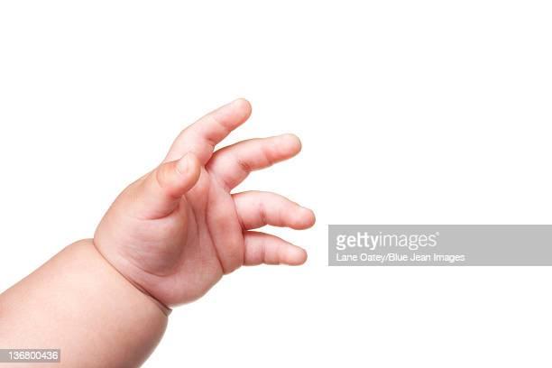 Baby's Hand, Close Up