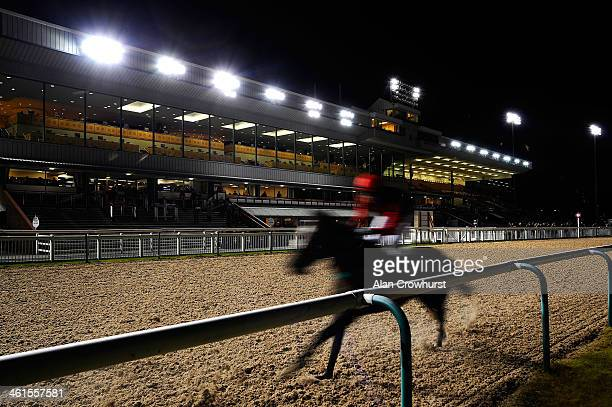 A back marker passes the grandstand in The Coral Mobile 'Just Three Clicks To Bet' Handicap Stakes at Wolverhampton racecourse on January 09 2014 in...