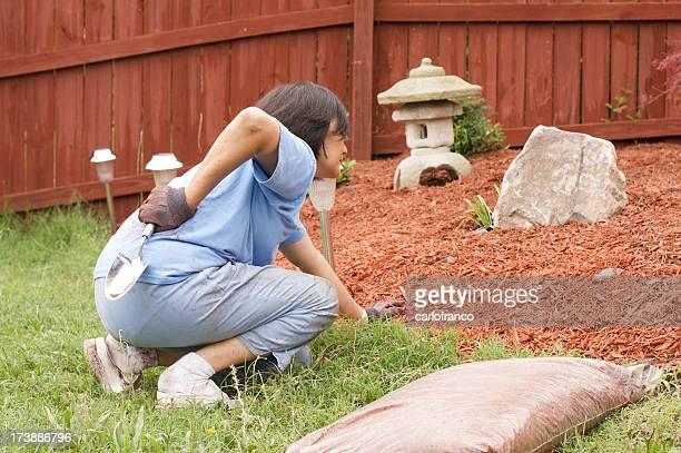 back pain gardening