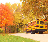 A school bus driving kids back to school in the fall on a beautiful autumn road.