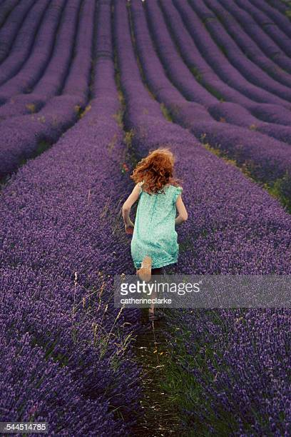 Back view of girl (6-7) running through lavender field