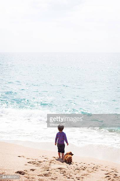 Back view of little boy standing beside his dog on the beach looking at the sea