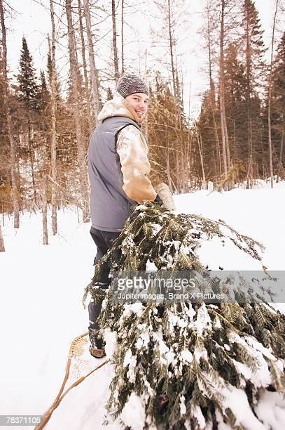 Back view of man dragging Christmas tree