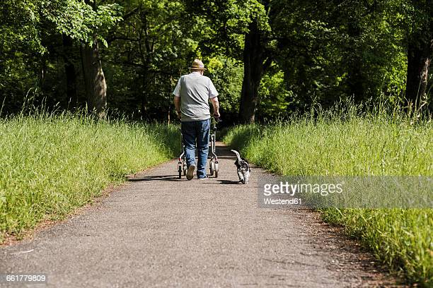 Back view of senior man strolling with wheeled walker and his dog in nature