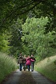 Back view of two couples walking down rural lane