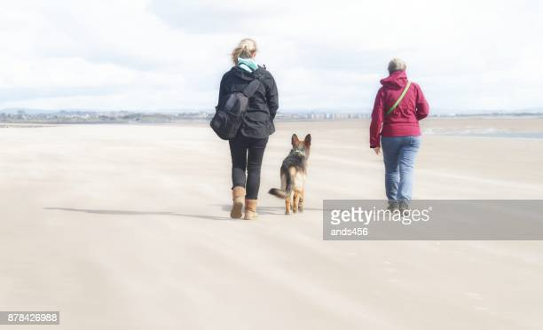 back view of two women walking dog on beach