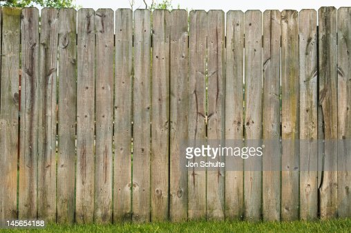 Back yard fence