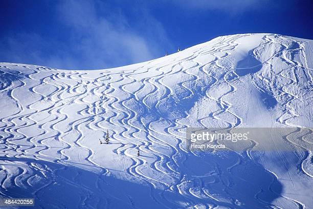 Backcountry ski lines cover a beautiful hill.