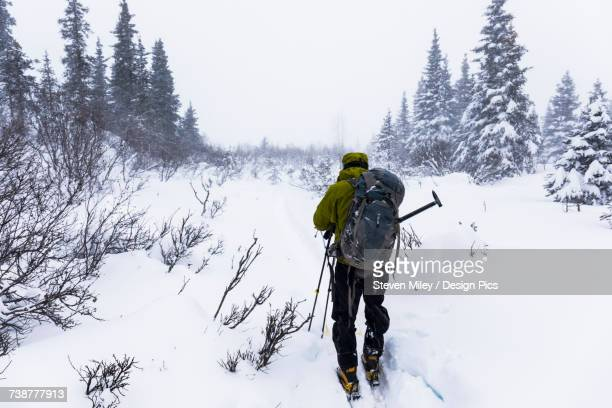 A backcountry skier faces into blowing snow during a subzero blizzard in the Alaska Range