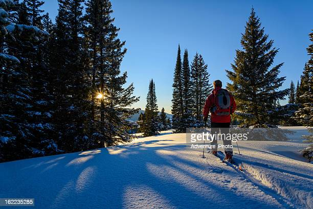 Backcountry Skier Ski Touring High in Mountains