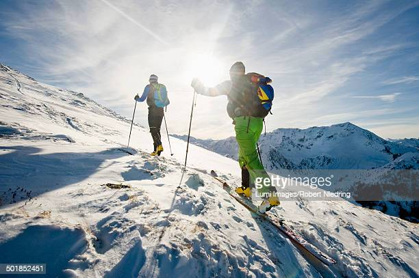 Backcountry skiers on the move, with back light, Alpbachtal, Tyrol, Austria, Europe