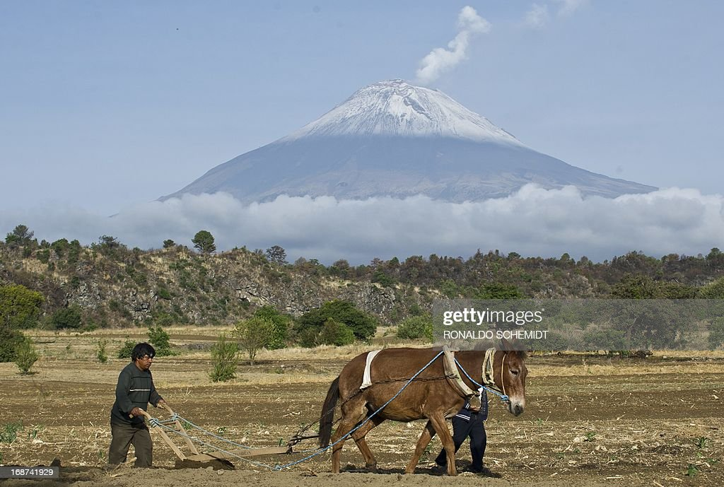 Backdropped by Popocatepetl Volcano, Mexico's second highest peak just 55 km southeast of Mexico City, a farmer plows the land in San Nicolas de los Ranchos, in the state of Puebla, on May 14, 2013. The National Disaster Prevention Centre (CENAPRED) raised the alert level on Sunday to 'yellow phase three' as the Popocatepetl continues to spew ash and smoke.