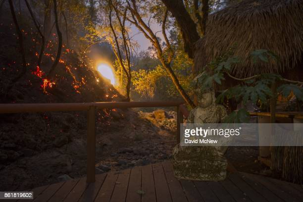 A backfire is set by firefighters to protect houses in Adobe Canyon burns near a back deck statue during the Nuns Fire on October 15 2017 near Santa...