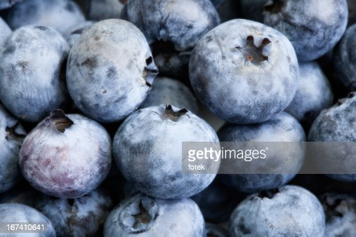 Background blueberries : Stock Photo
