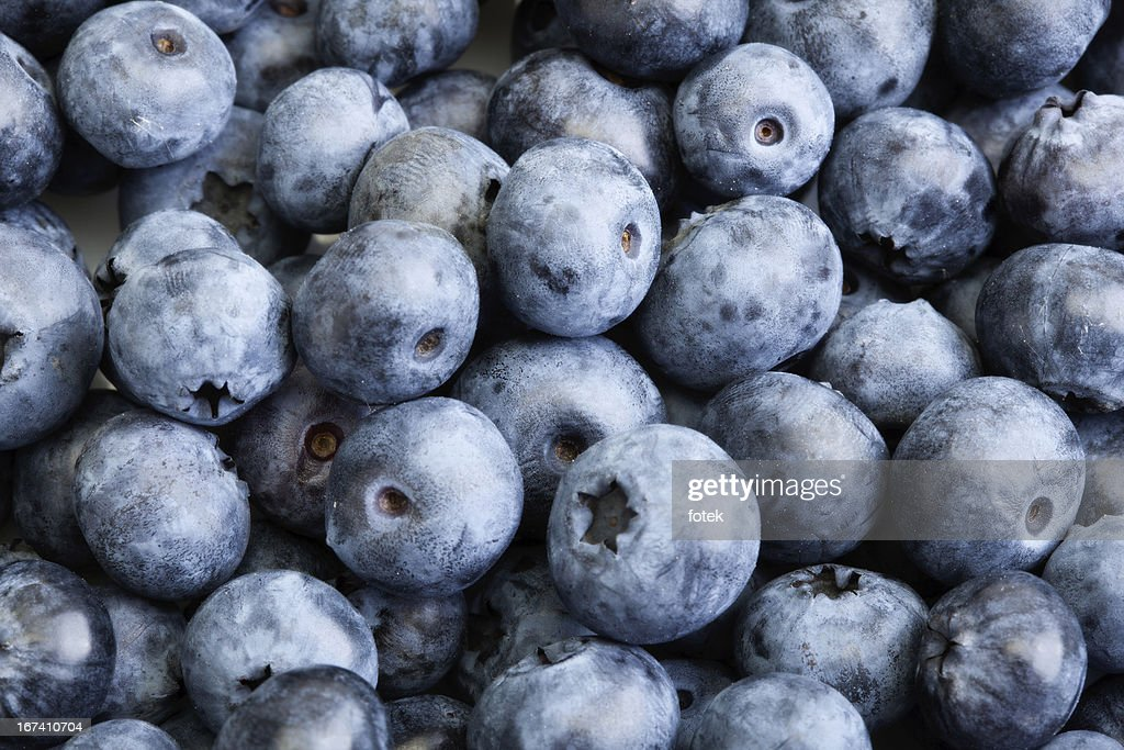 Background blueberries : Bildbanksbilder