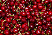 Background from fresh red cherries with a twig, close up. Lot of ripe berries lying on the table with selective focus