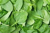 Background made of fresh babyleaf spinach