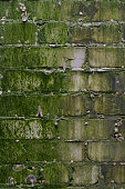 Background of a vintage brick wall coated with green moss and dirt