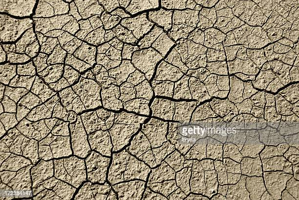 Background of crackedand dried  earth