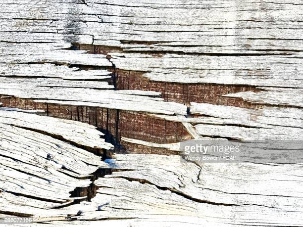 Background of white weathered wood