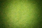 Green grass texture background golf course