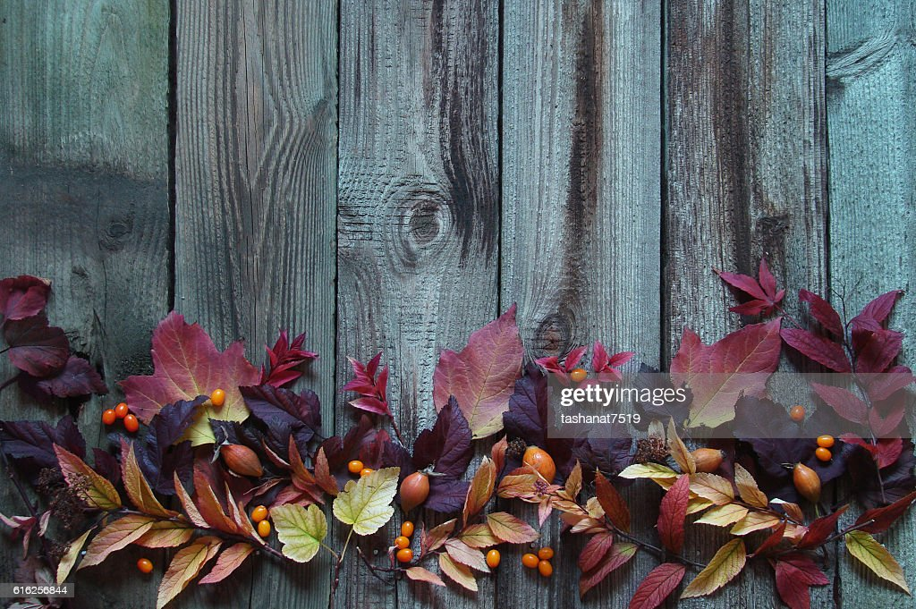 Background with autumn leaves : Stock Photo