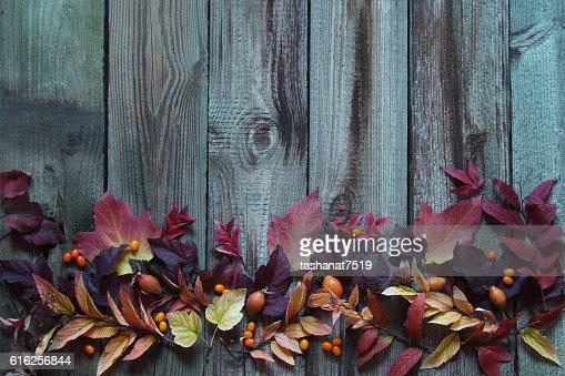 Fundo com outono folhas : Foto de stock