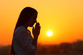 Side view backlight portrait of a woman silhouette praying at sunset