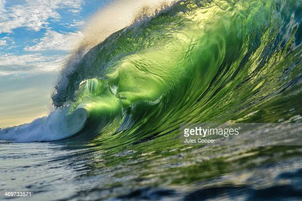 Backlit Wave